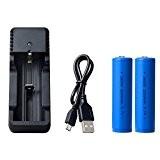 18650 Li-ion rechargeable avec chargeur, pour lampe torche LED, phare et bicyclette, 2 piles + 1 chargeur USB, pas pour ...